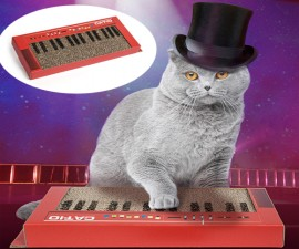 Cat Keyboard Scratcher
