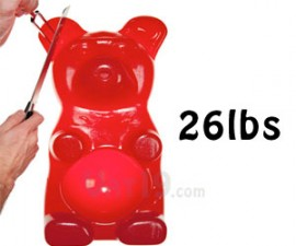 26 Pound Gummy Bear