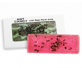 Real Ant Candy